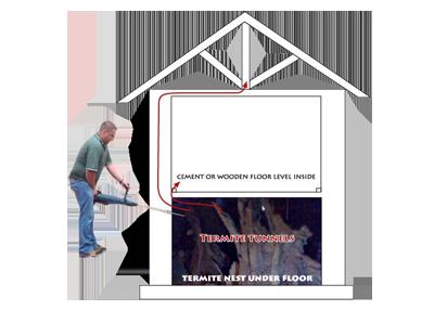 cobus-spykering-the-termites